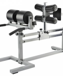 York STS Glute Hamstring Machine