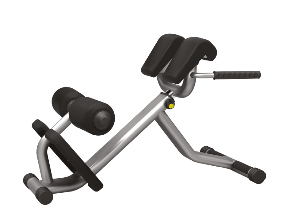Care Fitness P Pro Lower Back Bench Fitness Equipment Ni