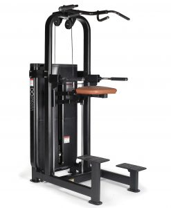 Endura Fitness PRO SELECT Assisted Chin & Dip Machine